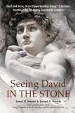 Seeing David in the Stone: Find and Seize Great Opportunities Using 12 Actions Mastered by 70 Highly Successful Leaders