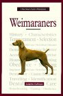 A New Owner's Guide to Weimaraners