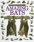 Amazing Bats (Eyewitness Juniors)