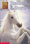 Stallion in the Storm (Animal Ark Hauntings #1)
