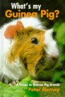 What's My Guinea Pig?: A Guide to Guinea Pig Breeds