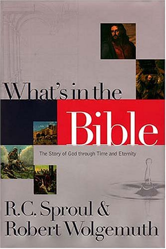 What's In The Bible The Story Of God Through Time And Eternity