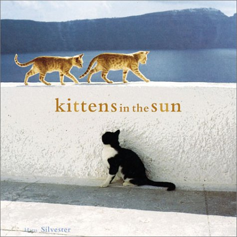 Kittens in the Sun by Hans W. Silvester
