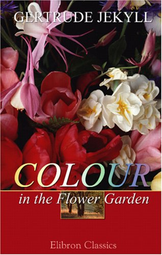 Colour In The Flower Garden