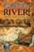 Cold River (Cemetery Dance Novella Series, #13)