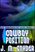 Cowboy Position (The Positions of Love, #6)