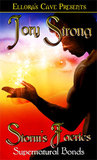 Storm's Faeries (Supernatural Bonds #2)