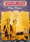 Many Waters (Time, Book 4)