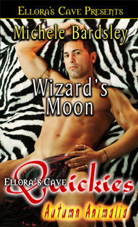 Wizard's Moon by Michele Bardsley