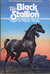 The Black Stallion (The Black Stallion, #1)