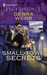 Small-Town Secrets (Colby Agency, #32)