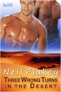 Three Wrong Turns in the Desert by Neil Plakcy