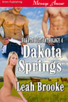 Dakota Springs by Leah Brooke