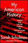 My American History: Lesbian and Gay Life During the Reagan/Bush Years