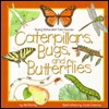 Caterpillars, Bugs, and Butterflies
