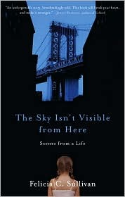 The Sky Isn't Visible from Here by Felicia Sullivan