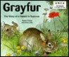 Grayfur, the Story of a Rabbit in Summer