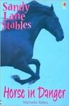 Horse in Danger (Sandy Lane Stables, #7)