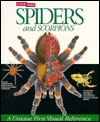 Spiders and Scorpions  by P.D. Hillyard
