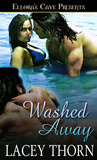 Washed away (Island Guardians, #3)