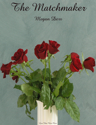 The Matchmaker by Megan Derr