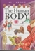 All about the Human Body