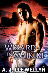 A Wizard in Waikiki by A.J. Llewellyn