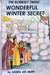 The Bobbsey Twins' Wonderful Winter Secret