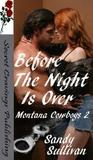 Before the Night is Over (Montana Cowboys, #2)