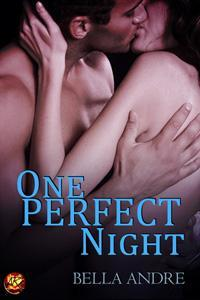 One Perfect Night (The Sullivans, #8.5)