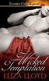 Wicked Temptation (Wicked Affairs, #2)