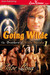 Going Wilde (The Brothers of Wilde, Nevada #1)