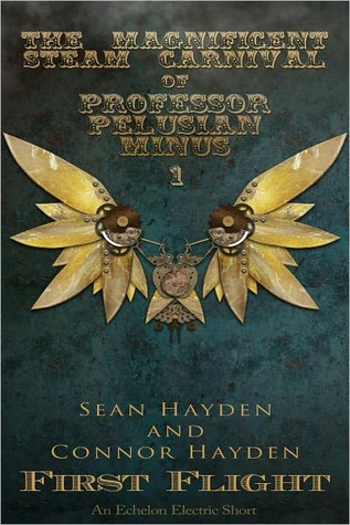 First Flight by Sean Hayden