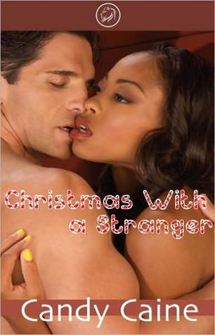 Christmas With A Stranger (Cub Bites)