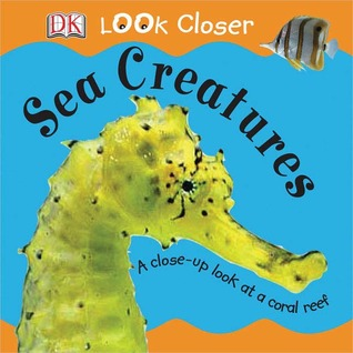 Sea Creatures (Look Closer by Sue Malyan