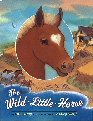 The Wild Little Horse by Rita Gray