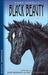Puffin Graphics: Anna Sewell's Black Beauty (Graphic Novel)