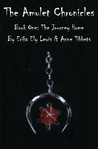 The Amulet Chronicles: Book I: The Journey Home