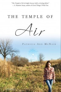 The Temple of Air by Patricia Ann McNair