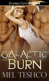 Galactic Burn (Alien Hunger, #1)