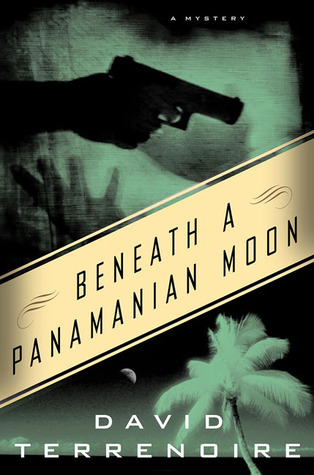 Beneath a Panamanian Moon by David Terrenoire