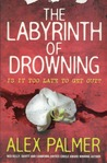 The Labyrinth of Drowning