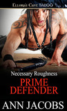 Prime Defender (Necessary Roughness, #4)