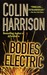 Bodies Electric: A Novel