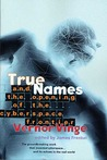 True Names: and the Opening of the Cyberspace Frontier