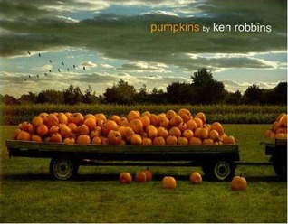Pumpkins by Ken Robbins