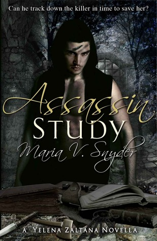 Assassin Study by Maria V. Snyder