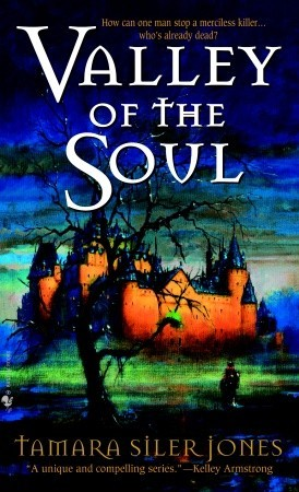 Valley of the Soul (Dubric Bryerly #3) by Tamara Siler Jones
