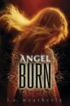 Book Review: Angel Burn