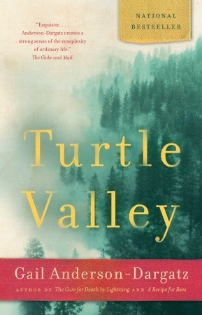 Turtle Valley by Gail Anderson-Dargatz